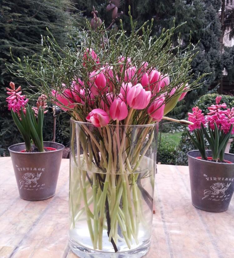 Tulpen im Nest