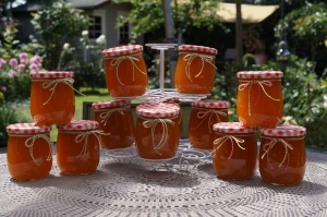 Aprikosenmarmelade °DIY