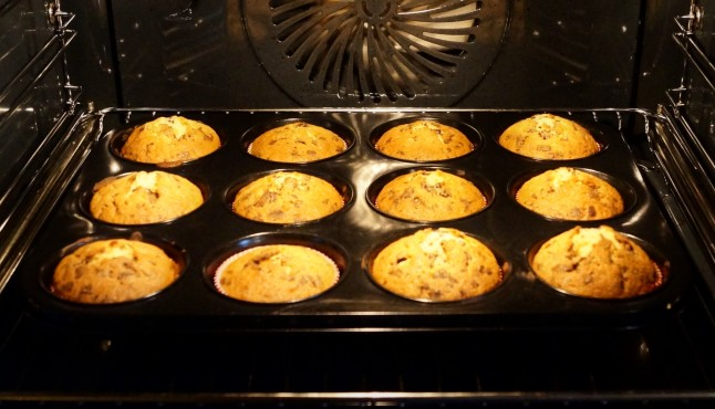 Muffin °Alina