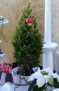 Tischdekoration Weihnachten °Mini-Scheinzypresse White Snow