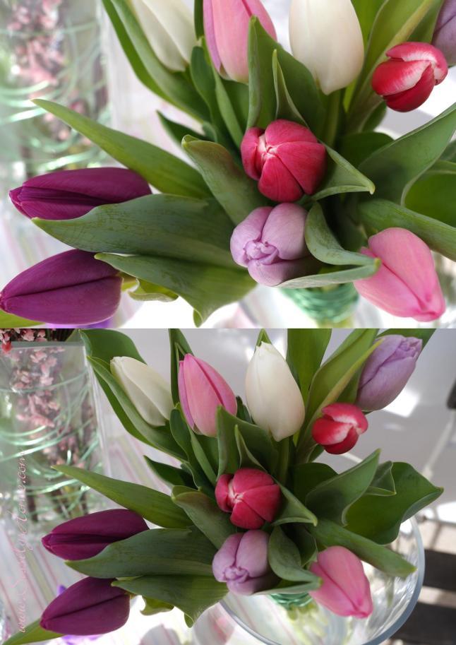 Tulpengeflüster II
