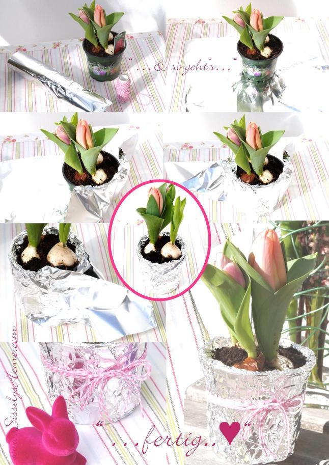 Tulpengeflüster Arbeitsschritte