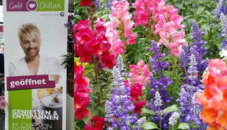 Café Chillax im Gartencenter Ahrens + Sieberz