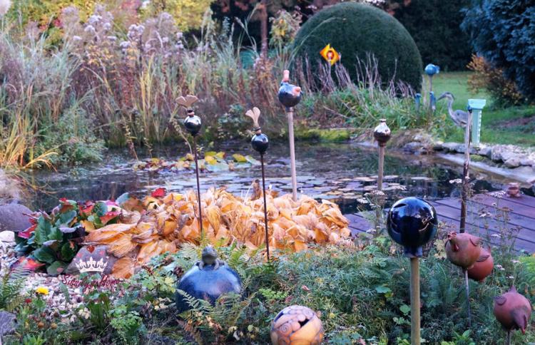 Impressionen Herbst °Teich