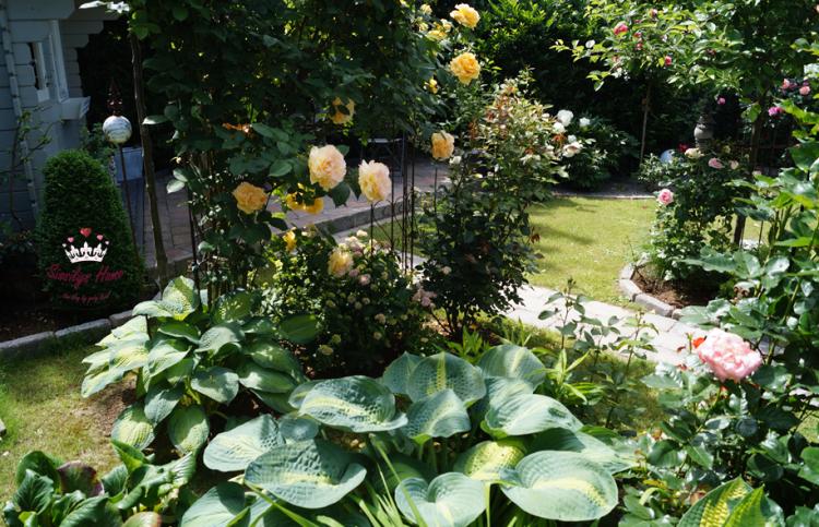 Garten *16