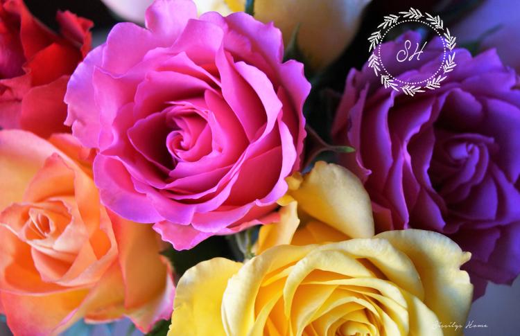 Valentinstag Rosenstrauß